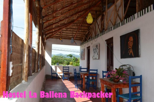 Hostel La Ballena Backpacker Las Galeras mochilera divertida